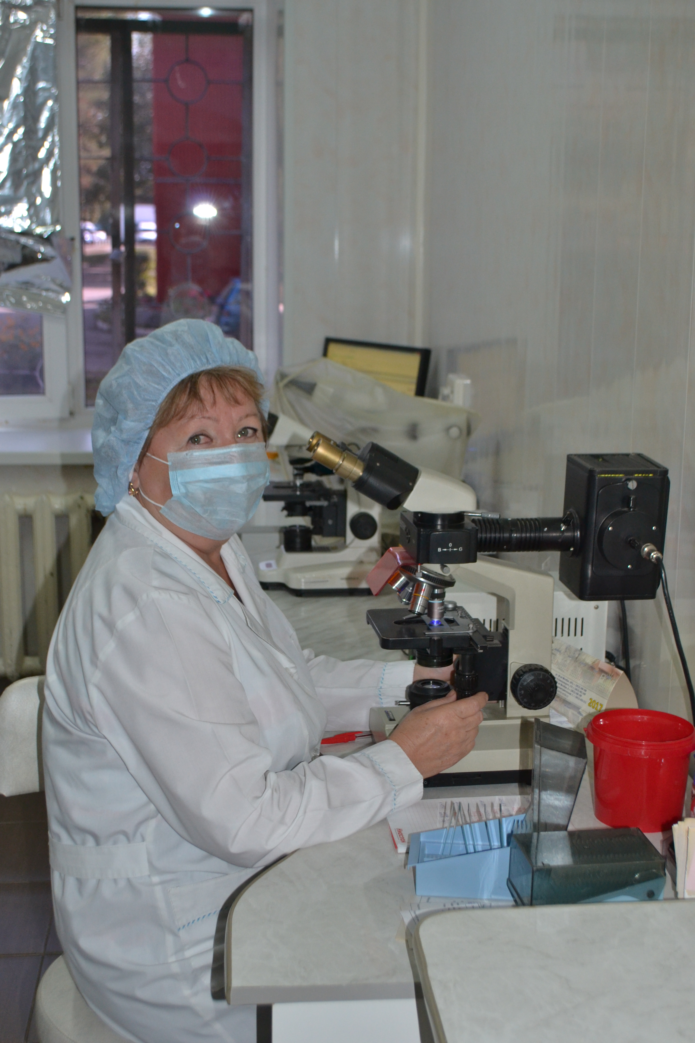 Степаненко Л.Л